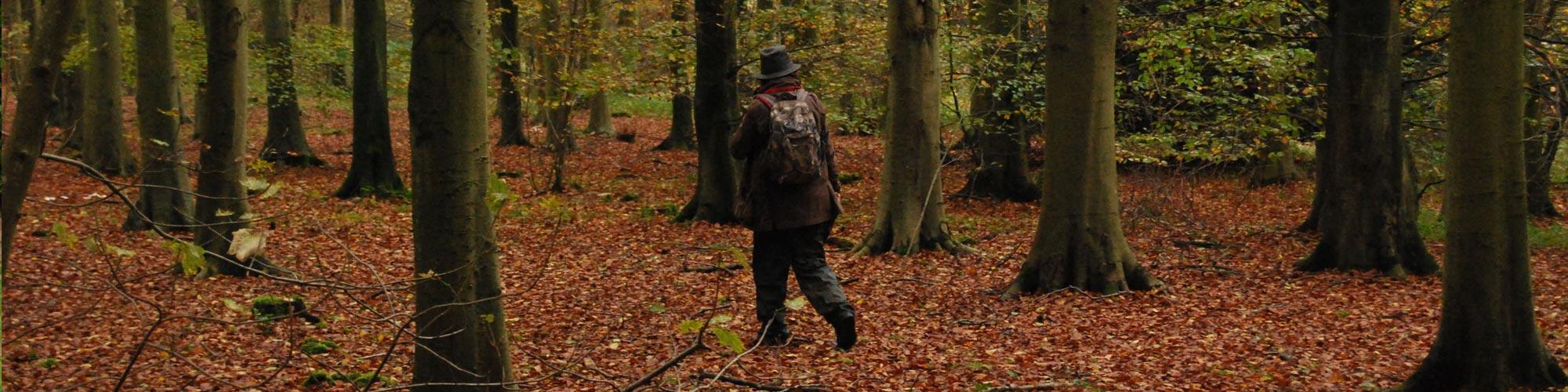 Truffle-And-Mushroom-Hunter-Surveys