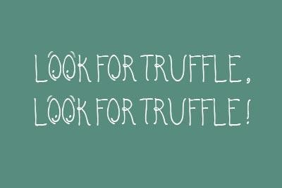 Look-For-Truffle-Look-For-Truffle